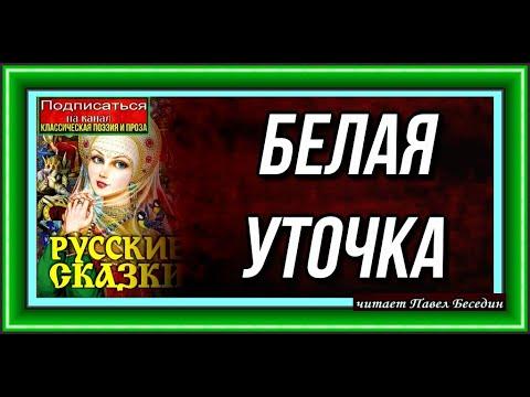 Сказка о золотом петушке читать сказку онлайн Пушкин А С