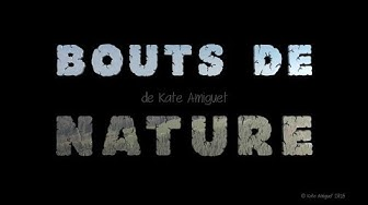 BOUTS DE NATURE  de Kate Amiguet - version intégrale