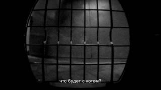 #возьмикотапермь