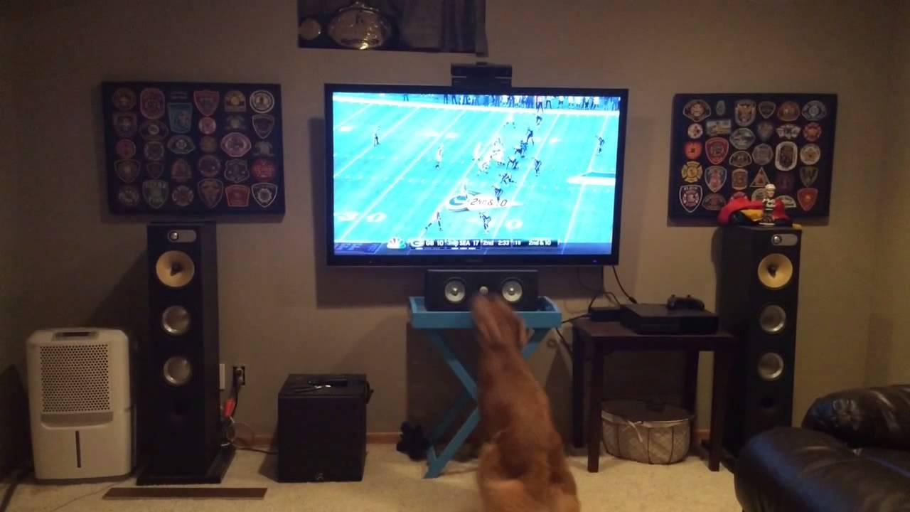 Le chien qui aime trop le football américain