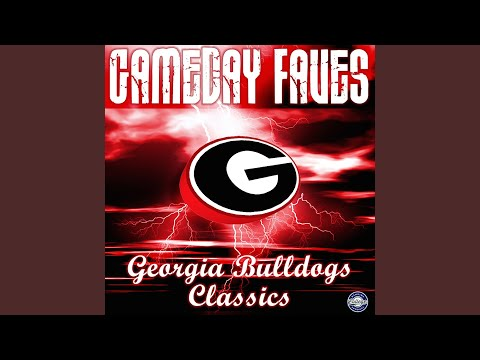 Let's Go Dawgs