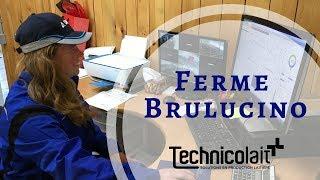 Ferme Brulucino - Robot VMS - Technicolait
