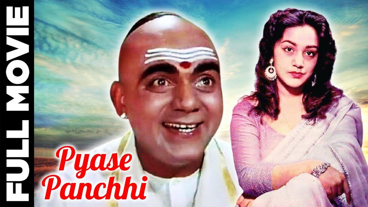 Pyase Panchhi (1961) Full Movie | प्यासे पंछी | Mehmood, Ameeta