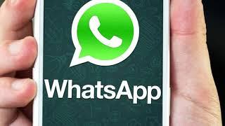 Как заработать деньги на ватцап в интернете новичку. WhatsApp Money заработок на фрилансе.