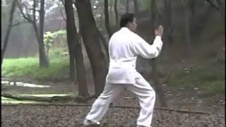Master ZHU Tian Cai Performs CHEN SHI Lao Jia Yi Lu @ ChenVillage ! Part 1 .