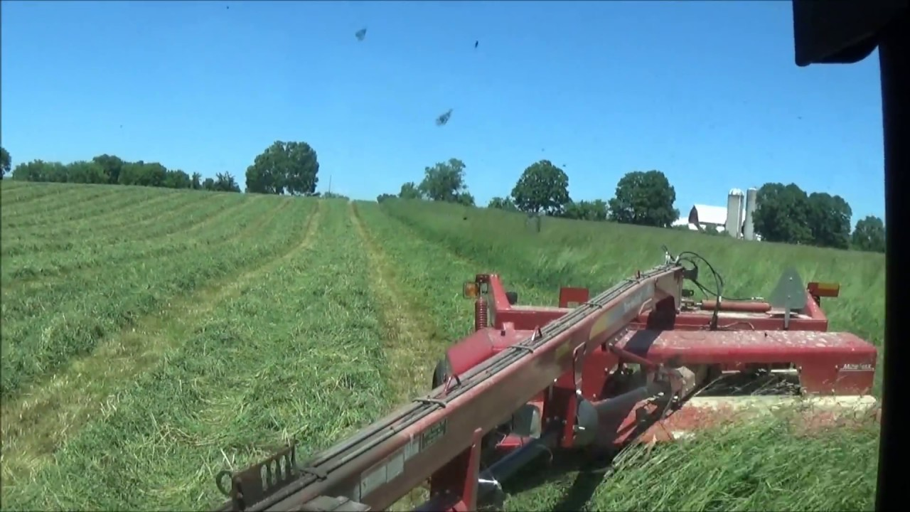 Cutting Hay! With A John Deere 6420 & A New Holland H7450 Discbine