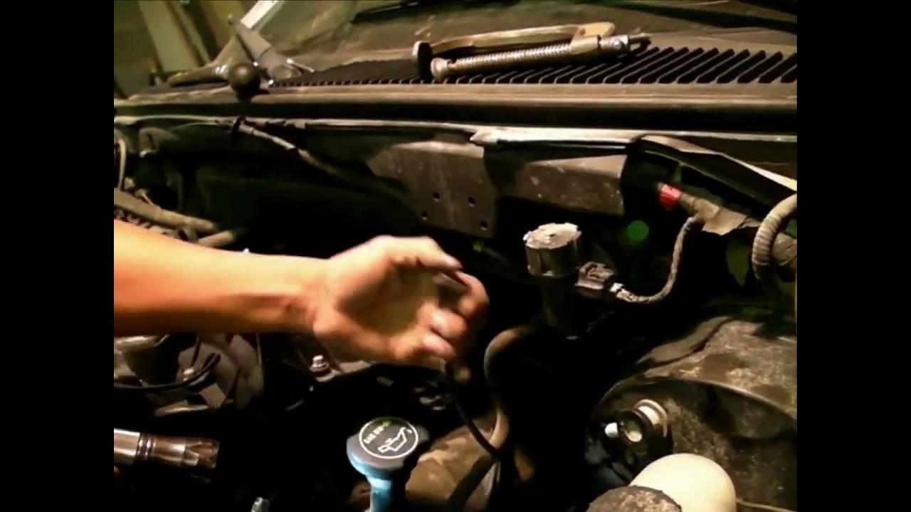 engine search Amateur