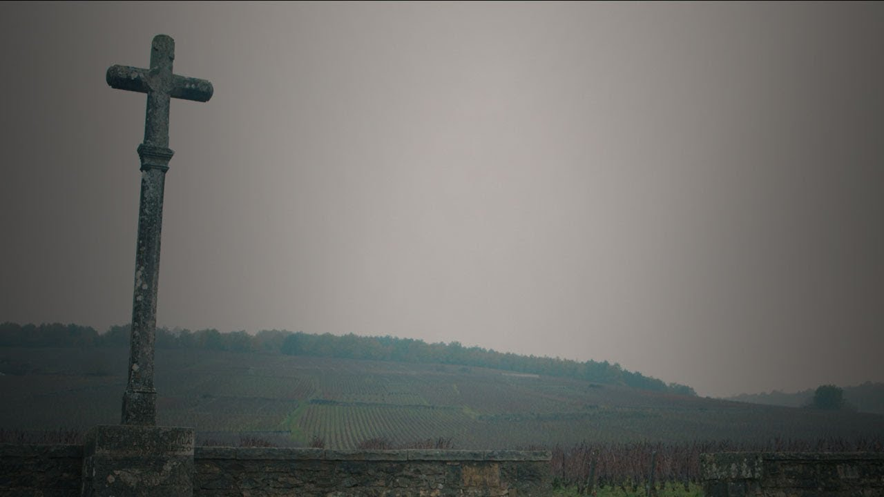 Bourgogne - Verdens mest eksklusive vinområde