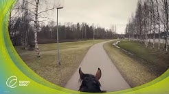 Leppävaaran urheilupuisto hevosen selästä