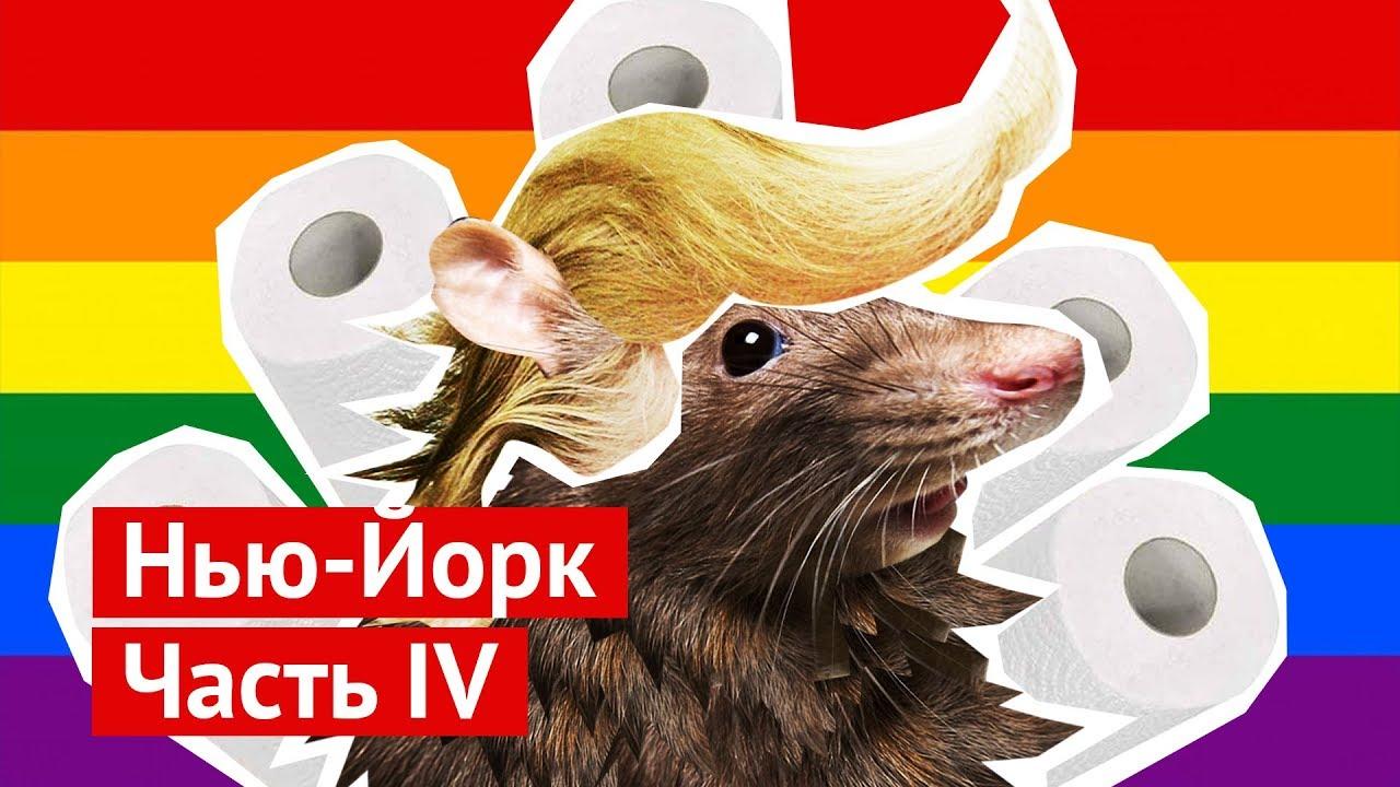 Нью-Йорк: центральный зоопарк, Трамп и чеченские геи
