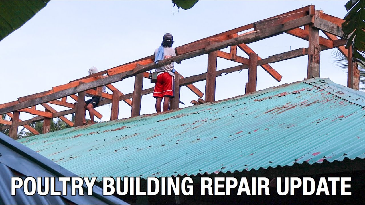 POULTRY BUILDING REPAIR UPDATE