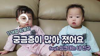 [브이로그]11개월 쌍둥이 육아/궁금증이 많아졌어요/개…