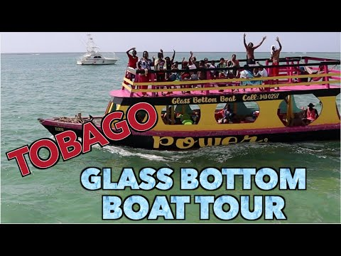 Tobago Glass Bottom Boat Tour you MUST see - VLOG
