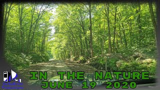 🌲 In The Nature - June 19 2020 - 🏕️