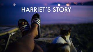 Harriet's Story