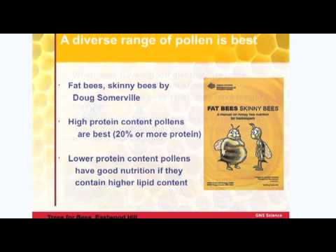 Bee Nutrition: Pollen, Nectar and Substitutes - Dr Karyne Rogers, Trees for Bees