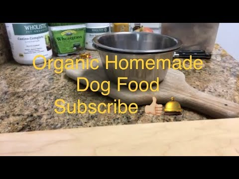 Cancer & Dogs ~ How to make homemade organic healthy dog food step by step instructions.