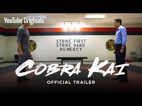 Official Cobra Kai Trailer – The Karate Kid saga continues