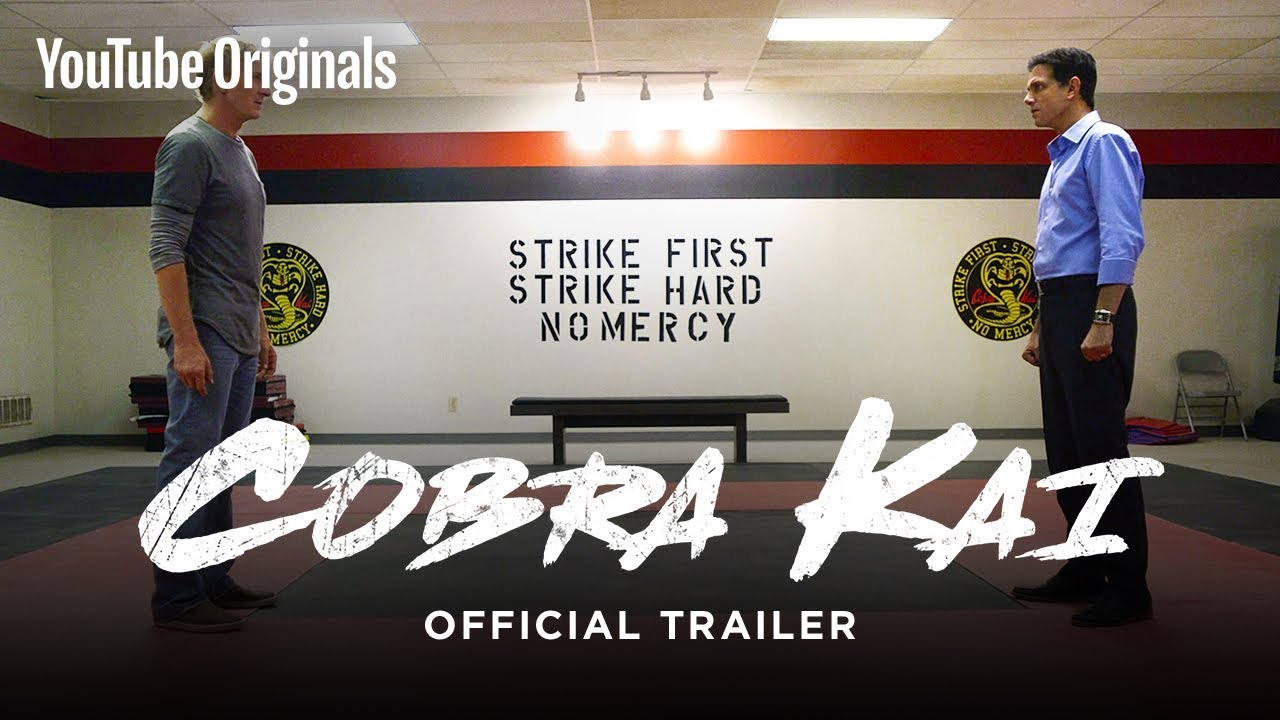 Download Official Cobra Kai Trailer - The Karate Kid saga continues