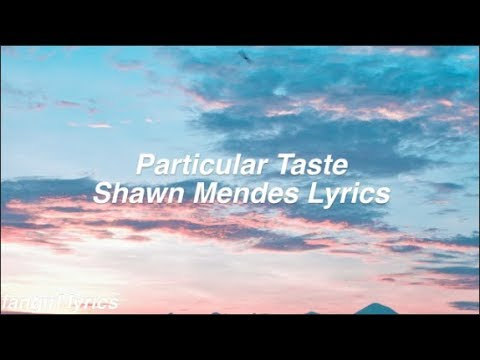 Particular Taste || Shawn Mendes Lyrics
