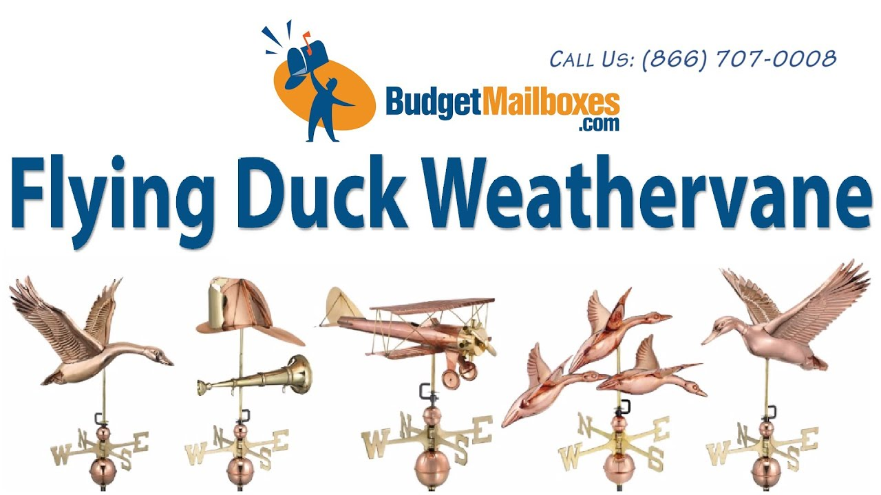 Budgetmailboxes Com Good Directions 9613p Flying Duck Weathervane Polished Copper Youtube