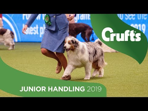 International Junior Handling Competition - Final Judging | Crufts 2019