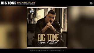 Big Tone - Reap What You Sow (Audio)