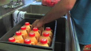Fresh Orange Juice at Cal Poly Pomona