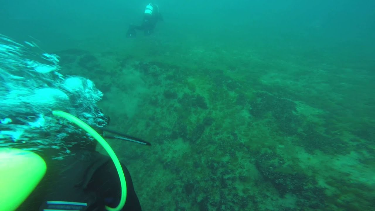 Open Water Scuba Diving Certification Nj Youtube