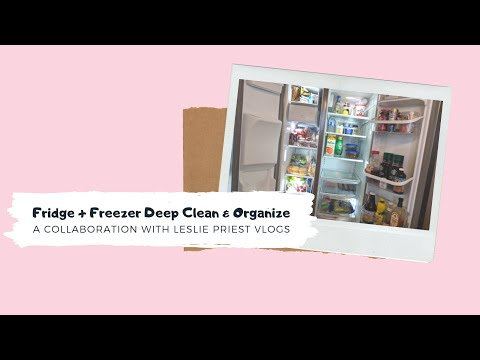 Fridge + Freezer Deep Clean & Organize | Motivation Collab With Leslie Priest Vlogs | Lorcia Mediro