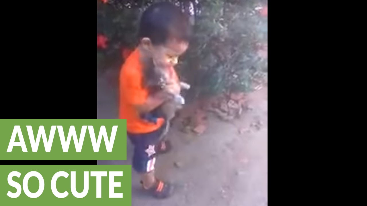 0d7070e83c48 Baby boy can t stop hugging his kitten - YouTube