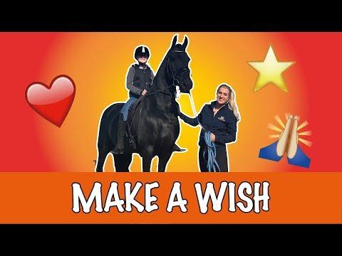 Britt laat dromen uitkomen! | PaardenpraatTV