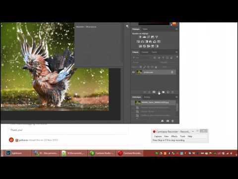 Tutoriel Photoshop CC : Conversion d'image en Noir et Blanc