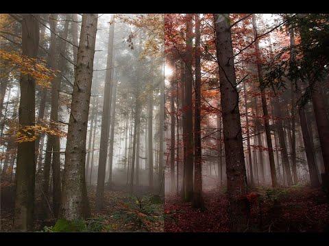 Как Сделать Лучи Солнца Из Простого В Удивительное В Фотошоп Быстро The Lights Of A Sun In Photoshop