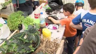Environnement : Fête de la nature à Bois d'Arcy