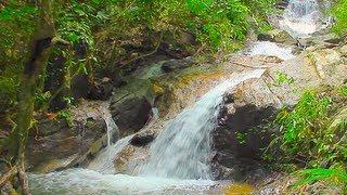 Водопад Кату на Пхукете. Достопримечательности Пхукета.(Водопады Кату -- расположенны в округе Кату, напротив горной гряды Пхукета, вблизи от гольф-клуба «Loch Palm»...., 2013-07-21T16:34:42.000Z)