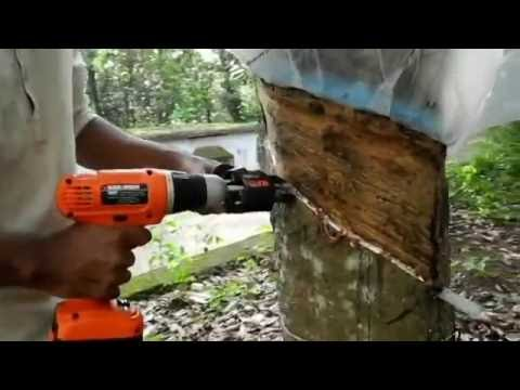 Dart Drill Automated Rubber Tapper Youtube