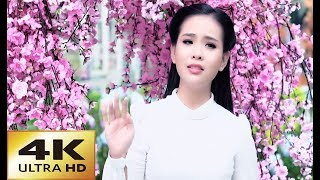 Hoa Đào Năm Trước - Quỳnh Trang [4K MV Official]