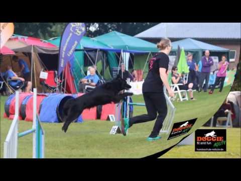 Deutsche Vereinsmeisterschaft Agility 2016 Doro und Scooter Doggie fit and fun