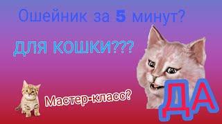 Как сделать ошейник для кошки / Своими руками / ВСЕМ СМОТРЕТЬ ОПИСАНИЕ!!!!!