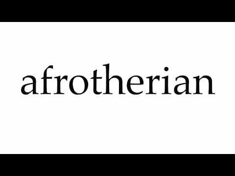 How to Pronounce afrotherian