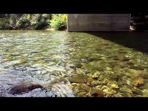 Butte Creek Honey Run