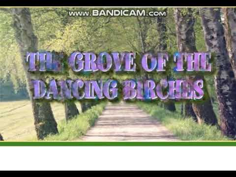 Download Excel 6 module 7 p82 ex1 The Grove of the Dancing birches video ver