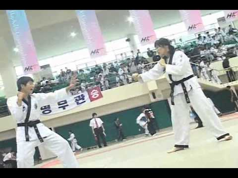 2008 World Hapkido Championship  in National Police University