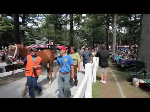 A Day at Saratoga Race Track