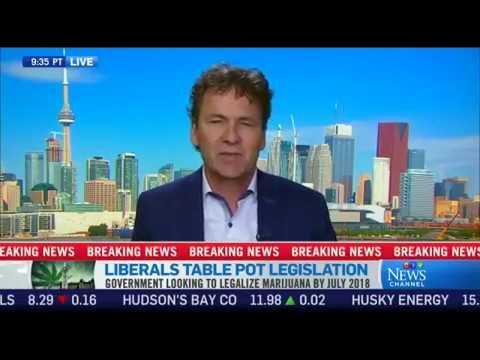 Tony Chapman Reacts to Pot Bill on CTV News