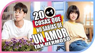 20+1 Cosas Que No Sabías De: Un Amor Tan Hermoso