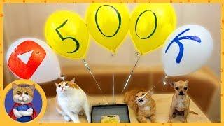 500k подписчиков, день рождения канала и ракета из колбасы для Рыжика