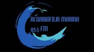 Acuariofilia Marina Programa 8 del 13 de octubre