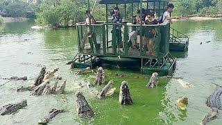 5 ZOOLOGICOS MAS PELIGROSOS Y EXTRAÑOS DEL MUNDO | FoolBox TV | Zoologico Humano
